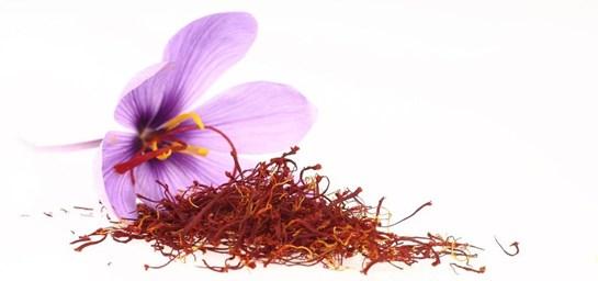 Safran|ImageSource:oleaoliva.com