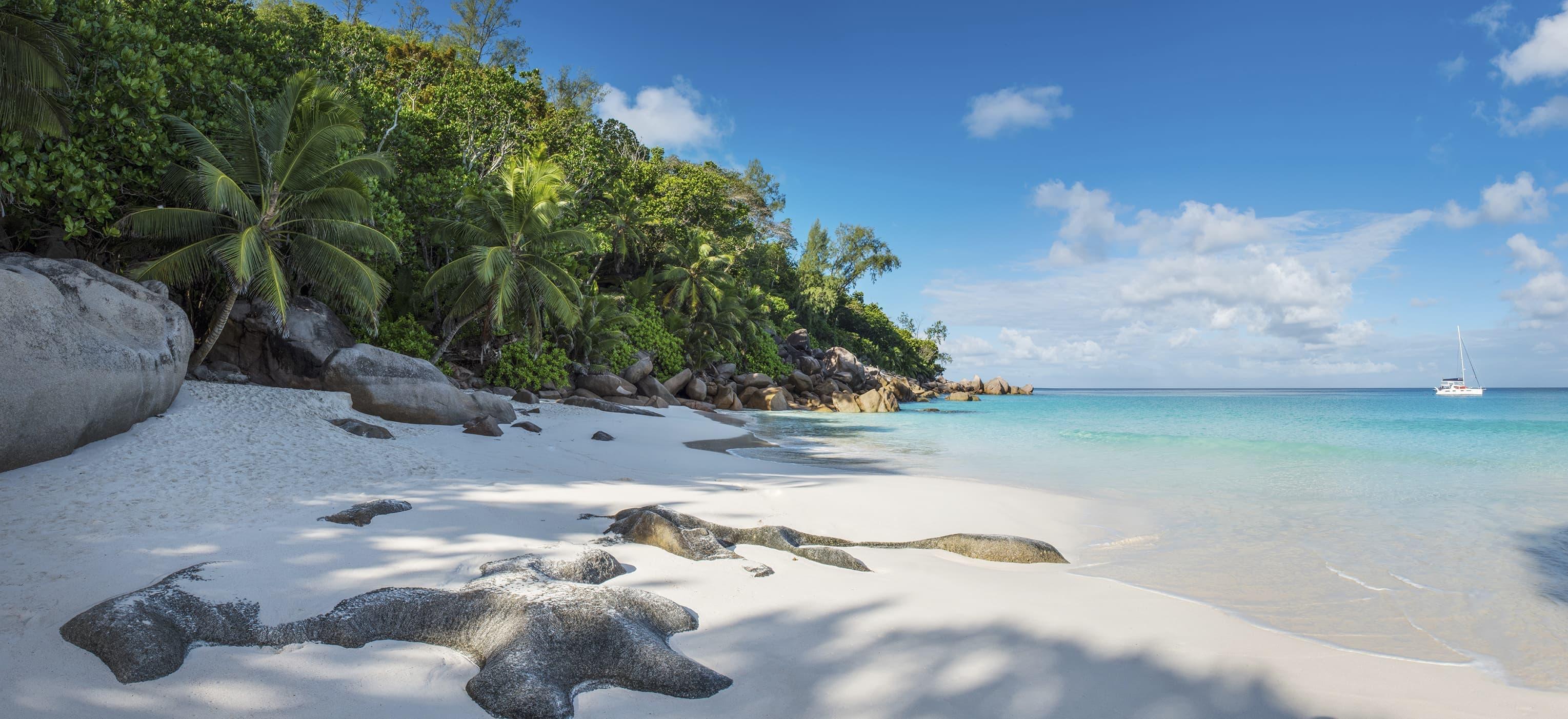 Vagues des seychelles